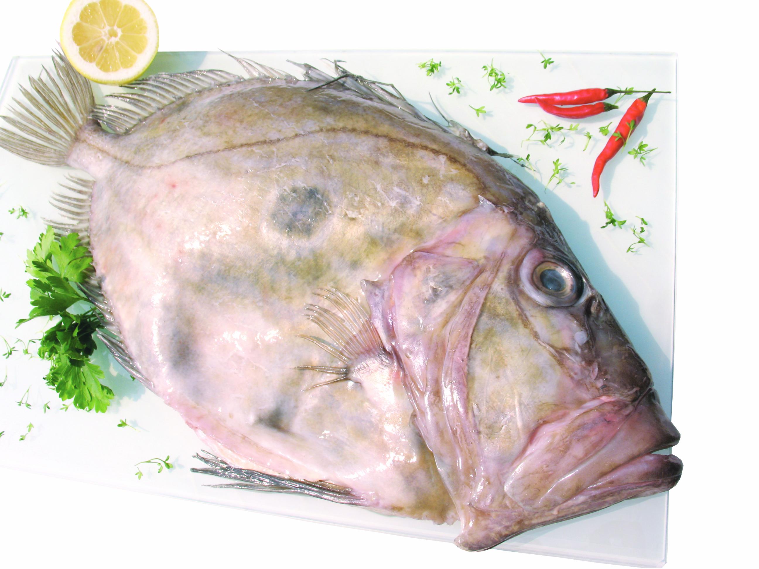 Petersfisch Preis